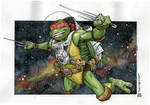Turtle in Space