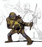 Leonardo (unfinished)
