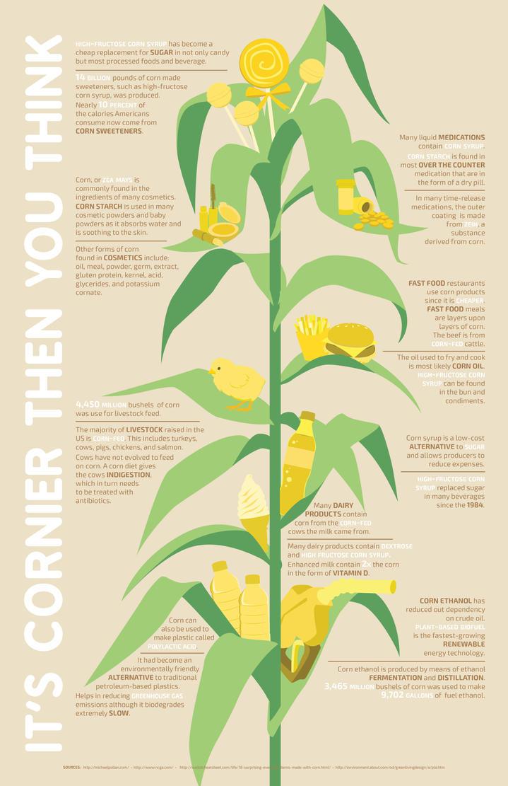 Corn Infographic by haineko123