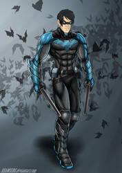 Nightwing by shamserg