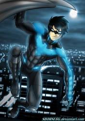 Nightwing! by shamserg