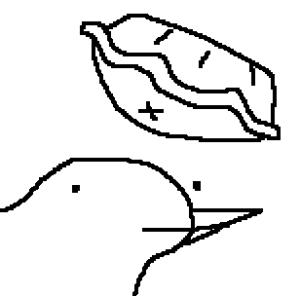 PieBirb's Profile Picture