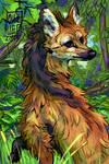 Maned wolf portrait