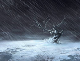 Freezing Rain by noahbradley