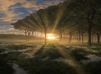 Horizon Canopy by noahbradley