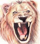 Lion by Threonine