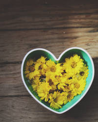 Bowl of sunshine.. by confidencecollapsed