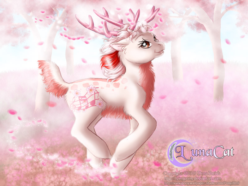 Cherry Blossom forest by FlyingPony
