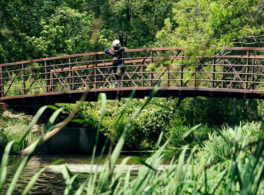Konoha Bridge by key0fdestiny13