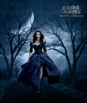 Beautiful Creatures - The Path to Darkness