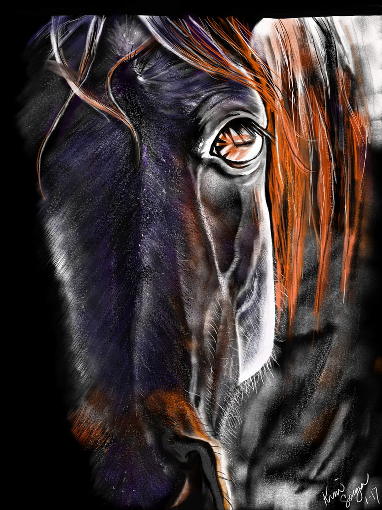 Paula-Rollins-Horse by SquidVango