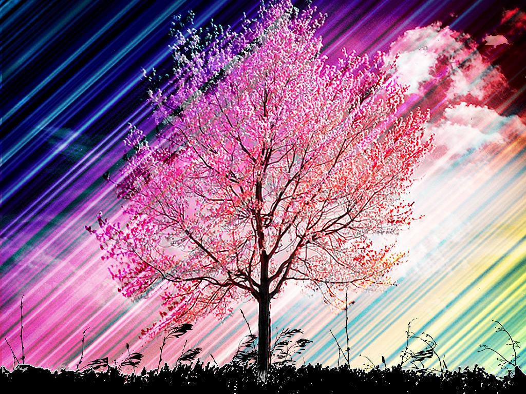 春 壁紙 Pc 自然 春 壁紙 Pc あなたのための最高の壁紙画像