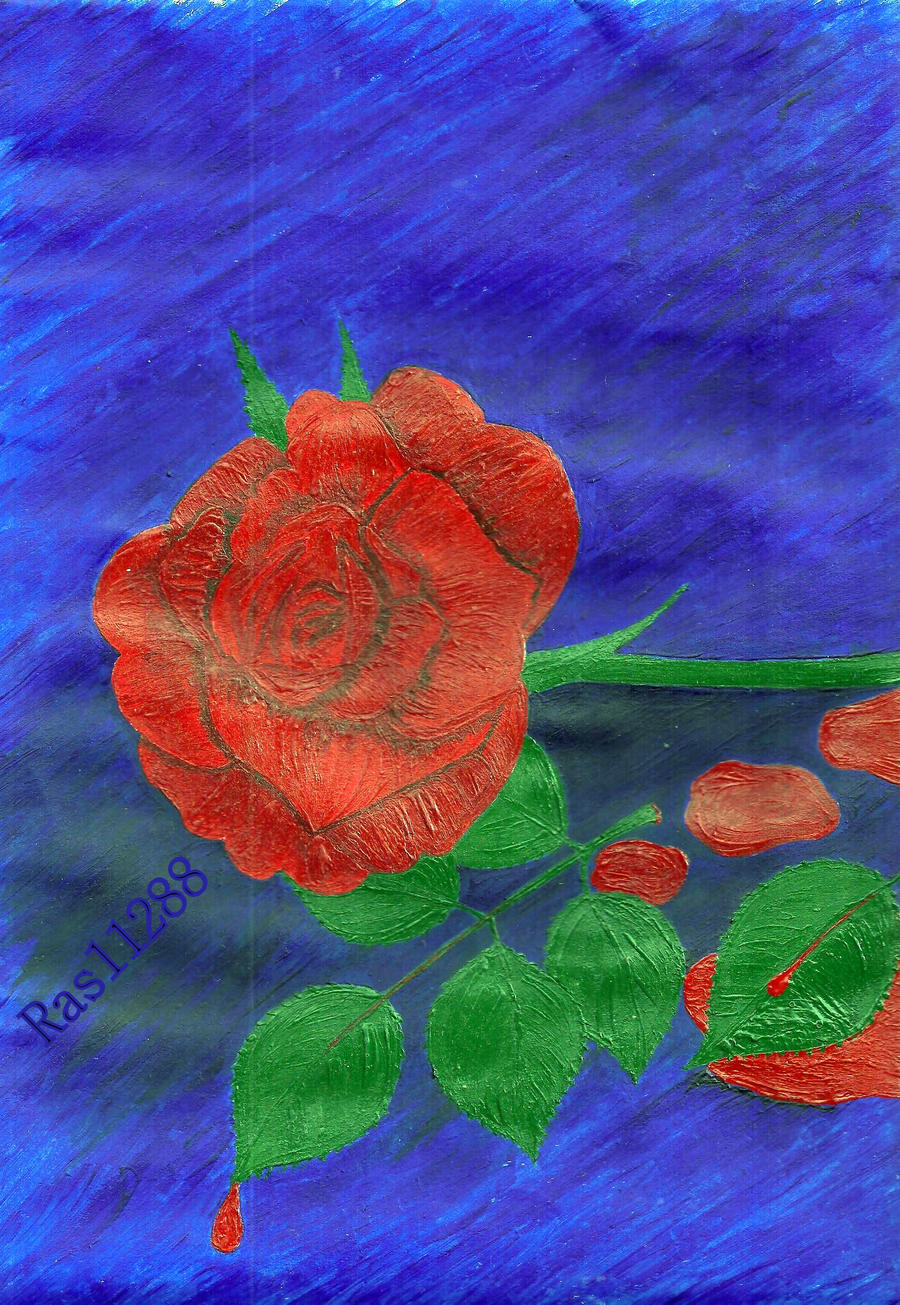 Bleeding rose by RAS11288