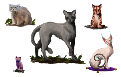 ABOREA Monster Cats