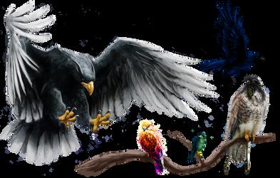 ABOREA Monster Birds