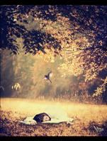 Beautiful Dream by ALBITAR