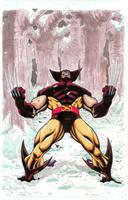 Wolverine by RAHeight2002-2012