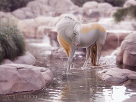 River Chaser by ephemira