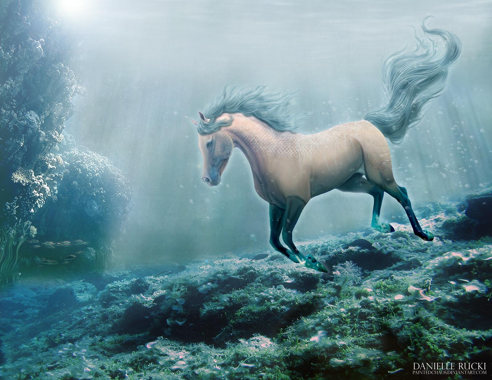 Under the Sea by ephemira