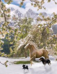 winter wonderland by ephemira