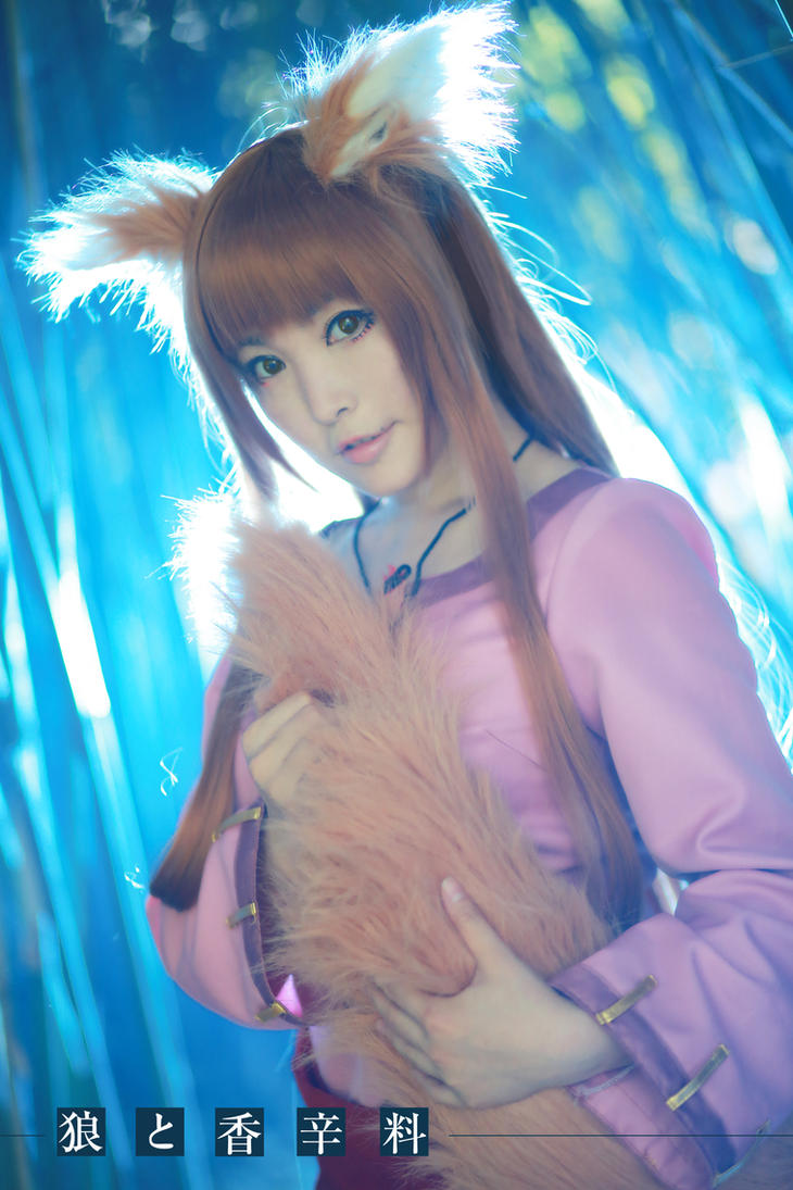 Spice and Wolf by sanmesongs