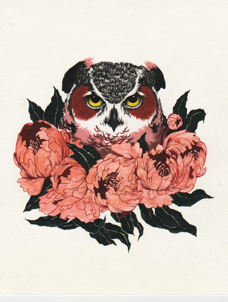 owl by An-Bird