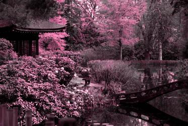 Japanese Garden by MidnightBlueTopaz