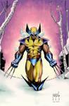 Wolverine by JMan_3H-colors