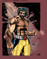 Wolverine colors by Absalom7