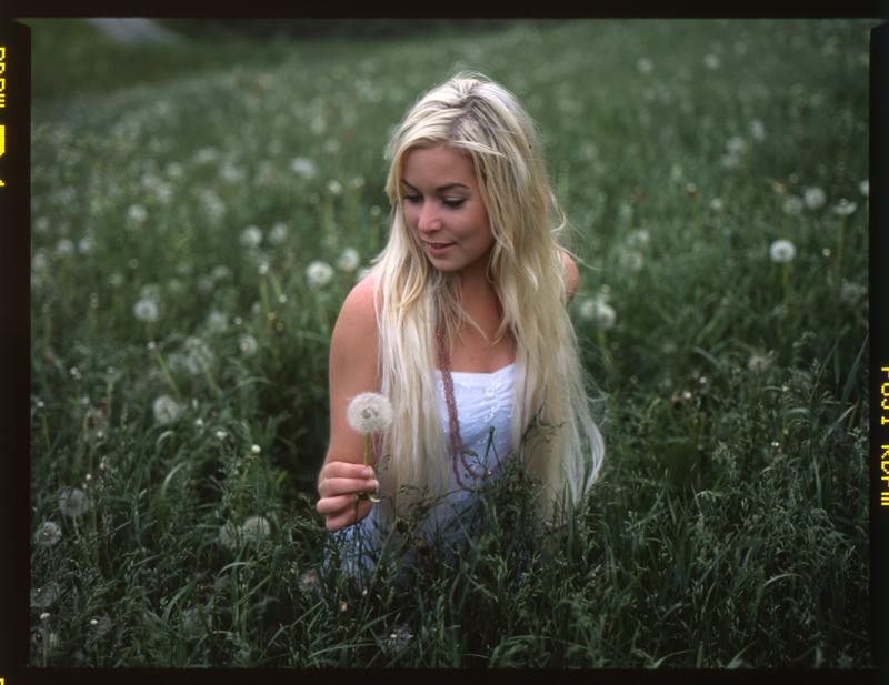 field of grass 3 by br3w0k