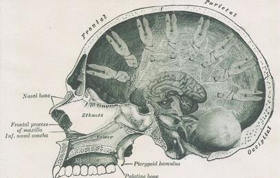 Giants On My Brain by hrn