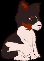 Iris The Cute Doggo