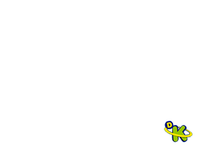 DK Bug 2013