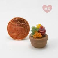 Miniature Potted Succulent 3