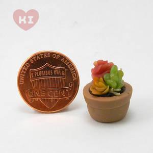 Miniature Potted Succulent 7