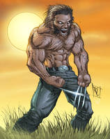 Wolverine Colored by RudyVasquez