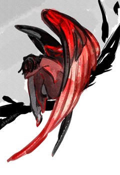 black (red)