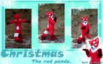 Christmas fursuit reference