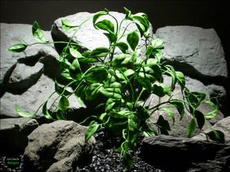 plastic aquarium plants | wondering vine by ronbeckdesigns