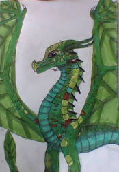 Sundew from wings of fire