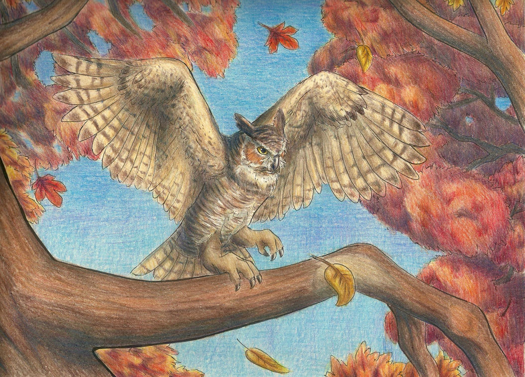 Great Horned Owl by Aki-rain