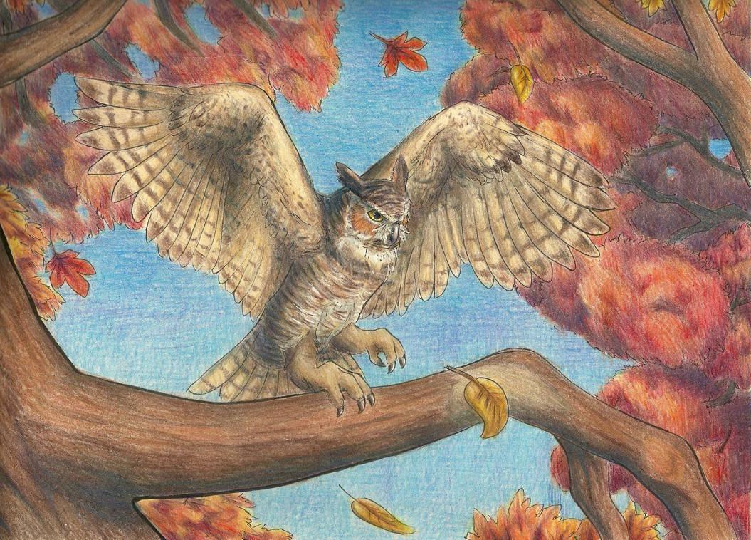 Great Horned Owl by Aki-rain