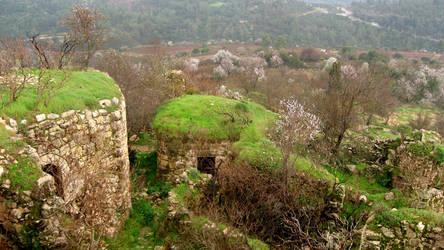 Crusader Ruins