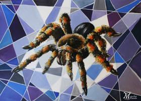 Insects -- Tarantula by HisakiChan