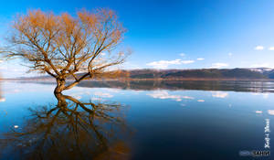 Golyazi - Reflection of Nature