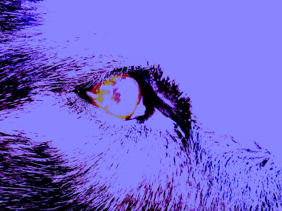 Red eye by Stephan-x7
