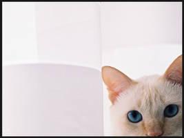 Azi - Blue Eyes
