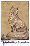 183 Corsac Fox ATC by AndromedasWitchery