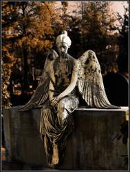 Angel II by R4venl0rd