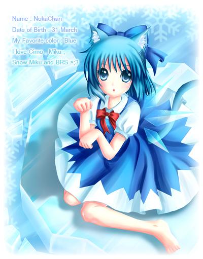 Nokapi's Profile Picture